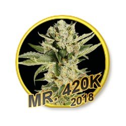 MR. 420K REGULAR