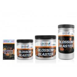 BLOSSOM BLASTER