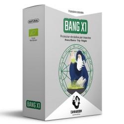 BANG X1 CANNABOOM