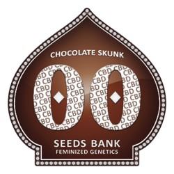CHOCOLATE SKUNK CBD