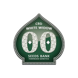 WHITE WIDOW CBD