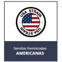 USA STRAIN